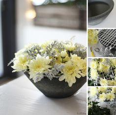 KUKKALA #krysanteemi #hopealehti #chrysanthemum #senecio