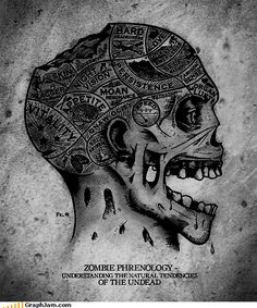 12 Infographics About Zombies