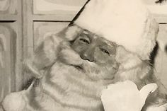 Rich history of Santa Claus instruction traces its roots back to Albion - The Buffalo News