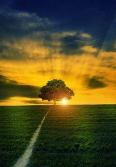 Sunset, by Bess Hamiti 500px.com