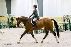 Often times I feel like a broken record. I tell my students and myself when I am riding, use the inside leg to the outside rein. Why? The outside rein holds the track. Without it you are inherently falling in and teaching the horse to fall in. The inside leg, because if you solely use the