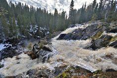 Puolanka Hepoköngäs - Hepöngäs Waterfall, the highest in Finland, in Hepöngäs Nature Reserve -  21.5 2017 pic.twitter.com/QwPe3gTSGQ