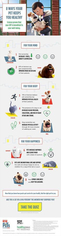 Did you know that pets can keep you healthy and happy? Find out how they improve your life!