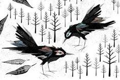 Birdy by Gavin Rutherford, via Behance