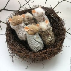 Новости. Swaddled baby mice in a nest.