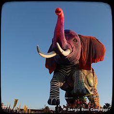Carnevale di Viareggio [DSCF4277]