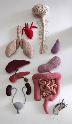 'Body Box' – Internal Organs Knit by Caroline Gates Originally shared here in this is still one of my favorite knitted pieces ever. Knitted art by Caroline Gates via . Knitting Projects, Crochet Projects, Knitting Patterns, Crochet Patterns, Knitting Wool, Free Knitting, Crochet Toys, Knit Crochet, Crochet Beard