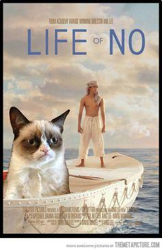 Life of NO…