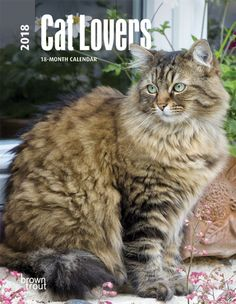 Cat Lovers 2018 6 X 7.75 Inch Weekly Engagement Calendar  ISBN: 978-1-4650-9696-8