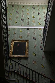 Timorous Beasties Birds 'n' Bees Sage wallpaper stairway