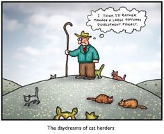 Software development and the herding cats analogy just goes together. Hear Cat, Herding Cats, Cat Plants, Cat Comics, Change Management, Project Management, Instructional Design, Digital Strategy, Software Development
