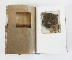"""what lies beyond — by lotta helleberg 11"""" x 7"""", 32 pages, flax paper, walnut ink, eco prints"""