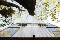 Shed Architecture & Design  #Treehouse Pinned by www.modlar.com