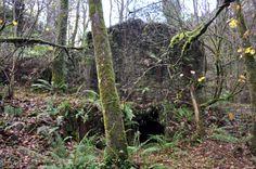 Viejo molino de rio abandonado. La naturaleza vuelve a dominar lo que fue su espacio.