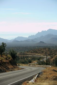 The roads of #Baja look endless, but they're on the perfect scenery for a nice driving jurney. Mexico
