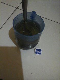 Katanya bisa membantu regenerasi sel dan mencegah kanker, mari nyeduh teh hijau...