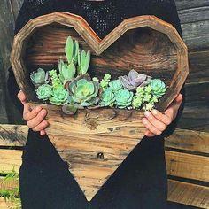 Pallet Heart suculent garden