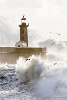 Lighthouse in Porto - the wild Atlantic in winter  Portugal