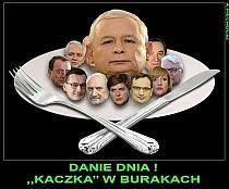 Stylowi.pl - Odkrywaj, kolekcjonuj, kupuj Wtf Funny, Hilarious, Funny Images, Funny Pictures, Weekend Humor, Everything And Nothing, Man Humor, Offensive Memes, Best Memes