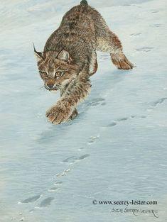 MOOSE ART PRINT Silent Waters by John Seerey-Lester 29x24 Wildlife Poster