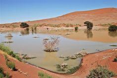 Sossusvlei, Namibia - Water in a desert