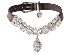 expensive dog leashes | Dog Boutique, Designer Dog Clothing and Accessories for your Dog ...