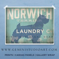 Norwich Terrier laundry company laundry room by geministudio, $25.00