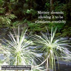Mystery abounds; allowing it to be stimulates creativity Poem and photo by Stephanie Mohan - Feb 2015