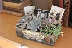Use vintage cigar boxes for both plants and photos. These can be placed on the memory table, or used as centerpieces.