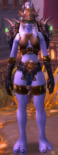 11 Best Transmog Images In 2014 Armor Concept Armors Armours