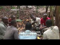 """These Ivory Coast Cacao Farmers Had Never Tasted Chocolate. """"Frankly, I do not know what one makes from cocoa beans,"""" farmer N'Da Alphonse tells Selay Marius Kouassi, a reporter for Metropolis, an international news website. He's heard it's turned into food, but he's never tried it. That's because chocolate isn't easy to find in Ivory Coast, and when it is, it's sold for around $2.70 — a third of what a farmer like Alphonse makes in a day."""