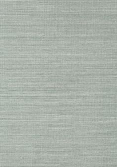SHANG EXTRA FINE SISAL, Mineral, T41168, Collection Grasscloth Resource 3 from Thibaut
