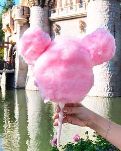 Disneyland Cotton Candy in the shape of Mickey Mouse ✧ Maude and Hermione on Pinterest ✧