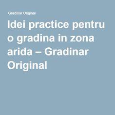 Idei practice pentru o gradina in zona arida – Gradinar Original