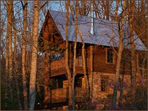 Woodpecker's Hollow North Carolina Cabin Rental. Just outside of Asheville what a great trip!