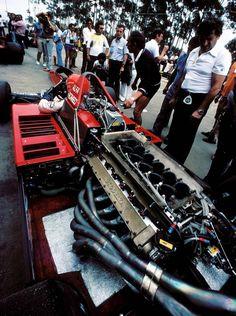 1979, Niki Lauda Brabham-Alfa