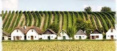 Impressionen aus dem Weinviertel Austria, Vienna Woods, Salzburg, Houses, Mansions, House Styles, Places, Vintage, Landscapes