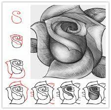 Αποτέλεσμα εικόνας για τριανταφυλλα ζωγραφικη
