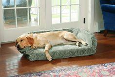 Over-the-top dog beds Photos Pitbull, Designer Dog Beds, Bed Photos, Dog Rooms, Pet Furniture, Architectural Digest, Dog Design, Labrador Retriever, Dog Cat