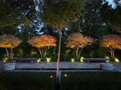 Private Garden I