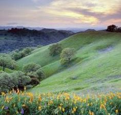 Mount Diablo State Park hills, Walnut Creek, Calif., image