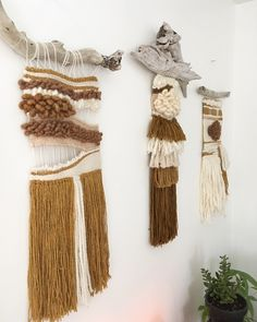Neutral Tryptich. House of Woolly Thyme