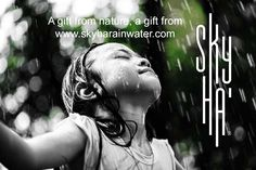 www.skyharainwater.com Best drinking rainwater from the Caribbean Jungle Free from acid rain Purified under a strict process of filtration First drinking rainwater in the Riviera Maya
