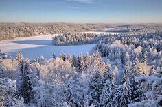 Snowy landscape in Finland