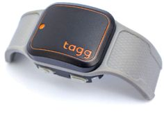 Activity monitor and GPS location tracker for dogs | Whistle