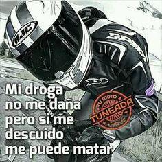 Sport Bike Helmets, Sport Bikes, Yamaha R1, Ducati, Motogp, Cars And Motorcycles, Biker, Racing, Memes