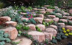 How to: build and plant an alpine rock garden