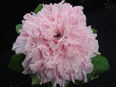 #Composite #Glamelia #bouquet