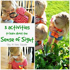 Preschoolers love to learn about the five senses. This theme is hugely appropriate as it can be very play based and hands-on while also being educational. Although we learned about all five sense in our unit, today I am sharing three creative ideas to teach preschoolers about the sense of sight.