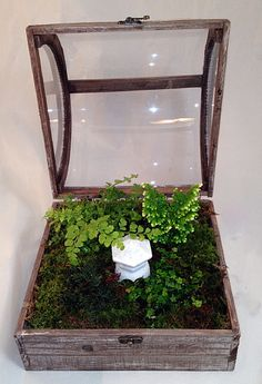 "$79.99 +10.85 S  Domed Terrarium (Wardian Case) with Snowkist Club Moss and Pagoda 10"" x 10"""